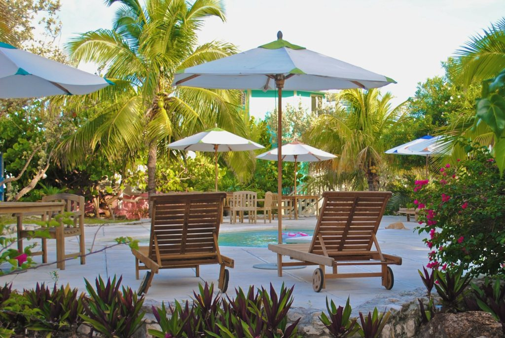 Un paradis végétal autour de la piscine pour un effet oasis garanti.